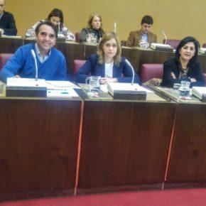 El Ayuntamiento de Albacete, a propuesta de Ciudadanos, impedirá la apertura de salas de apuestas cerca de colegios