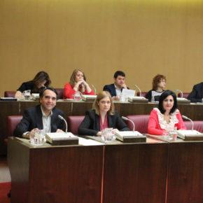El pleno aprueba la propuesta de Ciudadanos de crear un 'Canal Booktuber' para fomentar la lectura entre los jóvenes albaceteños