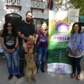 Ciudadanos Albacete promueve la adopción de animales de compañía como una opción beneficiosa