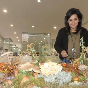 Ciudadanos Albacete apuesta por hacer del interés por los hongos y setas un atractivo turístico para la provincia